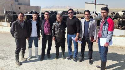 بازدید از دامداری آقای جوادیان به همراه اعضا دامداری آقای پاریابی از بهبهان